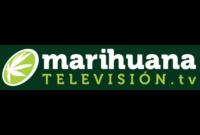 Marihuana Televisión